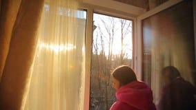 Γυναίκα στο παράθυρο που προσέχει τα πουλιά απόθεμα βίντεο