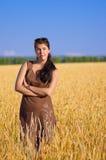 Γυναίκα στο πεδίο σίτου στοκ εικόνα με δικαίωμα ελεύθερης χρήσης
