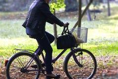 Γυναίκα στο ποδήλατο Στοκ Φωτογραφίες
