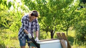 Γυναίκα τεχνών στα προστατευτικά γάντια που πριονίζουν την ξύλινη σανίδα στον ηλιόλουστο κήπο απόθεμα βίντεο
