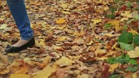 Γυναίκα τη διαγώνια χώρα και το μονοπάτι για βάδισμα το φθινόπωρο απόθεμα βίντεο