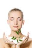 γυναίκα φυτών εκμετάλλευσης στοκ φωτογραφία με δικαίωμα ελεύθερης χρήσης