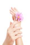γυναίκα χεριών προσοχής Στοκ Εικόνα