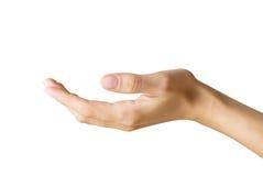γυναίκα χεριών s Στοκ Εικόνες