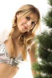γυναίκα Χριστουγέννων Στοκ φωτογραφίες με δικαίωμα ελεύθερης χρήσης