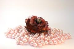 γυναίκα accesoryis jewelrys Στοκ εικόνα με δικαίωμα ελεύθερης χρήσης