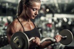 Γυναίκα bodybuilder Στοκ εικόνες με δικαίωμα ελεύθερης χρήσης