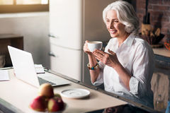 Γυναίκα Erderly που χρησιμοποιεί τον υπολογιστή απολαμβάνοντας τον καφέ της στοκ εικόνες