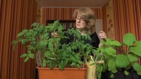 Γυναίκα nerd Εγχώριο θερμοκήπιο, νέες ποικιλίες των φυτικών συγκομιδών απόθεμα βίντεο