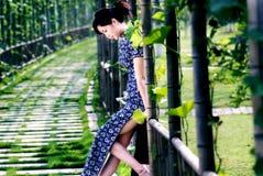 Γυναίκα Qipao και πλαίσιο σταφυλιών στοκ εικόνες