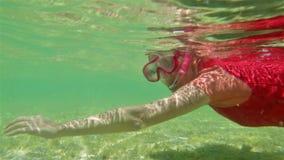 Γυναίκα Snorkeler στον κόλπο καρχαριών φιλμ μικρού μήκους