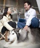 Γυναίκες με το σκυλί κατοικίδιων ζώων που μιλά στον κτηνίατρο Στοκ Εικόνες