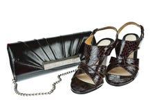 γυναίκες παπουτσιών τσα& Στοκ Εικόνα