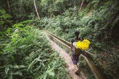 Γυναίκες που επιλέγουν τα λουλούδια Στοκ Εικόνες