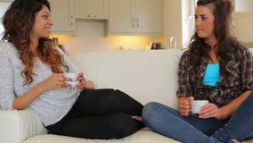 Γυναίκες που κάθονται στην ομιλία καναπέδων απόθεμα βίντεο