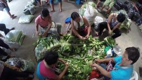 Γυναίκες που καθαρίζουν το κινεζικό λάχανο υπερυψωμένος φιλμ μικρού μήκους