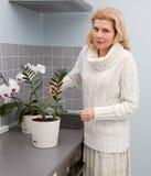 Γυναίκες που μαγειρεύουν τα τρόφιμα στην κουζίνα Στοκ Εικόνα