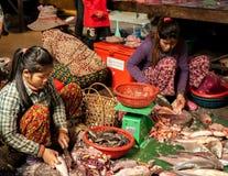 Γυναίκες που πωλούν τα ψάρια στην αγορά τροφίμων. Καμπότζη Στοκ φωτογραφία με δικαίωμα ελεύθερης χρήσης