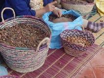 Γυναίκες που ραγίζουν argan τα καρύδια για να παραγάγει το πετρέλαιο στο Μαρόκο Στοκ φωτογραφίες με δικαίωμα ελεύθερης χρήσης
