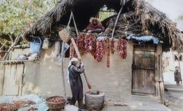 Γυναίκες στην εργασία στη λείανση των κόκκινων τσίλι Στοκ φωτογραφία με δικαίωμα ελεύθερης χρήσης