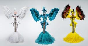 Γυναίκες στο κοστούμι φαντασίας με τα μανίκια φτερών στοκ φωτογραφία με δικαίωμα ελεύθερης χρήσης