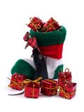 γυναικεία κάλτσα Χριστ&omicron Στοκ φωτογραφίες με δικαίωμα ελεύθερης χρήσης