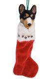 γυναικεία κάλτσα Χριστ&omicron Στοκ Εικόνες