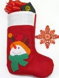 γυναικεία κάλτσα Στοκ Εικόνα