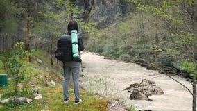 Γυναικείος οδοιπόρος με το σακίδιο πλάτης που κοιτάζει στους λόφους και τη λίμνη ποταμών βουνών, κορίτσι που απολαμβάνει το πανορ απόθεμα βίντεο