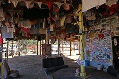 Γωνία κοκοφοινίκων ` s, Μπάχα Καλιφόρνια, Μεξικό, τον Ιανουάριο του 2014 Στοκ εικόνες με δικαίωμα ελεύθερης χρήσης