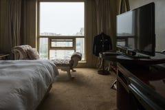 γωνία ως εσωτερικό ξενοδοχείων που πολύ πιθανό πλάνο δωματίων εμφανίζει ευρέως Στοκ Εικόνα