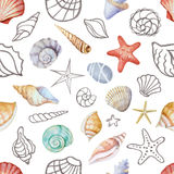 Γωνίες Watercolor του πλαισίου με τα κοχύλια θάλασσας ελεύθερη απεικόνιση δικαιώματος