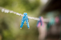 Γόμφος ενδυμάτων με τις πτώσεις νερού μετά από τη βροχή Στοκ φωτογραφία με δικαίωμα ελεύθερης χρήσης