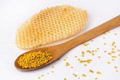 Γύρη μελισσών σε ένα ξύλινο κουτάλι και μια κηρήθρα Προϊόντα μελισσοκομίας Apitherapy Στοκ εικόνες με δικαίωμα ελεύθερης χρήσης
