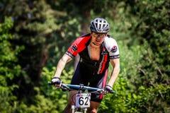 Γύροι ποδηλατών μέσω του δάσους Στοκ Εικόνες