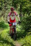 Γύροι ποδηλατών μέσω του δάσους Στοκ φωτογραφίες με δικαίωμα ελεύθερης χρήσης