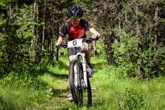 Γύροι ποδηλατών μέσω του δάσους Στοκ Εικόνα