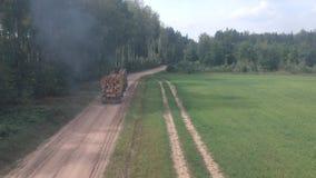Γύροι φορτηγών ξυλείας μέσω του δάσους απόθεμα βίντεο