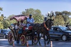 Γύρος αλόγων και μεταφορών γύρω από την παλαιά πόλη της Κέρκυρας Ελλάδα στοκ εικόνα