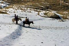 Γύρος αλόγων στην κοιλάδα βουνών φύσης Στοκ φωτογραφίες με δικαίωμα ελεύθερης χρήσης