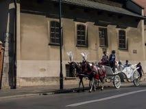 Γύρος αλόγων και μεταφορών γύρω από την Κρακοβία στην Πολωνία στην Κρακοβία Πολωνία Στοκ Εικόνες