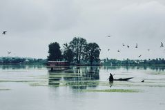 Γύρος βαρκών στη λίμνη DAL Στοκ Εικόνα