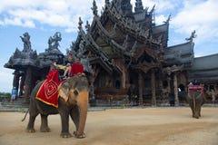 Γύρος ελεφάντων σε Pattaya στοκ εικόνες με δικαίωμα ελεύθερης χρήσης