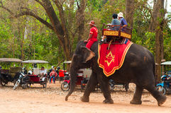 Γύρος ελεφάντων Στοκ φωτογραφία με δικαίωμα ελεύθερης χρήσης