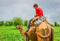 Γύρος καμηλών σε ένα ινδικό αγροτικό χωριό Στοκ φωτογραφίες με δικαίωμα ελεύθερης χρήσης