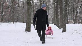 Γύρος πατέρων με λίγο μωρό στο έλκηθρο στο χιονώδες χειμερινό πάρκο 4K απόθεμα βίντεο