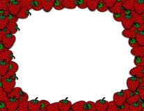 γύρω από τις φράουλες ελεύθερη απεικόνιση δικαιώματος