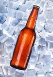 γύρω από τον πάγο μπύρας Στοκ εικόνες με δικαίωμα ελεύθερης χρήσης