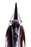 Γλουτός κυνηγετικών όπλων που απομονώνεται στοκ εικόνα με δικαίωμα ελεύθερης χρήσης