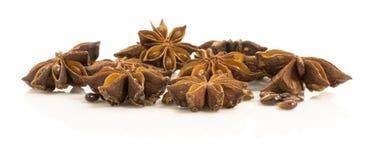Γλυκάνισο αστεριών. ξηροί σπόροι του anisum Λ. Pimpinella εγκαταστάσεων. Στοκ Εικόνες